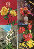 8 Oude Kaarten Bloemen In Vaas / Korf / Boeket - Old Flower Cards - Vieux Cartes Avec Fleurs                  FLOW7 - Flowers