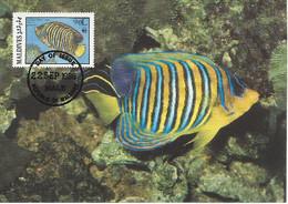 26129)  Maldives  WWF 1986 Fish Maxi Postcard Cover - Maldiven (1965-...)