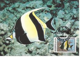 26130)  Maldives  WWF 1986 Fish Maxi Postcard Cover - Maldiven (1965-...)