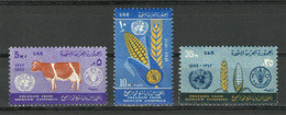 """Egypt - 1963 - ( UN - FAO """"Freedom From Hunger"""" Campaign ) - MNH (**) - Ungebraucht"""