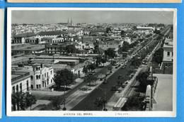 PRO144, Lima, Péru, Avenida Del Brasil, Circulée 1929 - Pérou