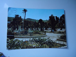 ALGERIA    POSTCARDS CHESHELL 1960  STAMPS  FLOWERS   2 SCAN - Sin Clasificación
