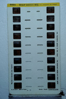 LESTRADE :  9325   WALT DISNEY  N°25  :  LES AVENTURES DE DONALD - Stereoscoopen