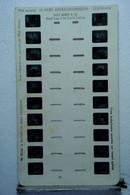 LESTRADE :  WALT DISNEY N°16   GRAND LOUP ET LES 3 PETITS COCHONS - Stereoscoopen
