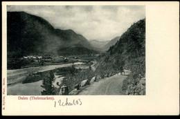 Dalen Thelemarken 1903 Nyblin - Norway