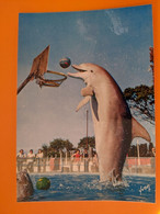 DAUPHIN  DOLPHIN MARINELAND - Dolphins