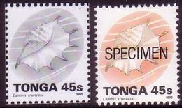 Tonga 1995  45s Shell - Proof In Black & White + Specimen - Tonga (1970-...)