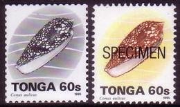 Tonga 1995  60s Shell - Proof In Black & White + Specimen - Tonga (1970-...)