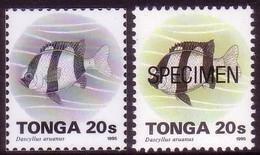 Tonga 1995  20s Fish - Proof In Black & White + Specimen - Tonga (1970-...)