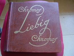 Original Old Album Liebig Brun Vide Pour 50 Séries - Sammelbilderalben & Katalogue