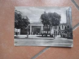 MOTTOLA Piazza Mercato Coperto Animata  Viaggiata 1961 Formato Grande - Taranto