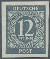 Alliierte Besetzung - Gemeinschaftsausgabe: 1946, Kontrollrat I, Ziffer 12 Pfg. Grau, Breitrandig Un - Gemeinschaftsausgaben