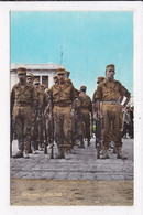 CP ALGERIE ALGER Fantassins De L'armée Nationale Populaire - Algiers