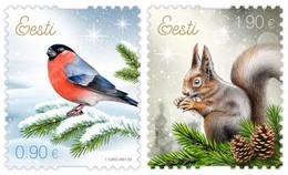 Estonia Estland Estonie 2021 (20) Christmas - Bird - Eurasian Bullfinch - Squirrel - Estland
