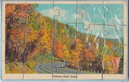 Mail-a-PUZZLE POST CARD - Autumn Road Scene - Unclassified