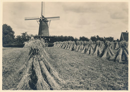 Nederland - 1946 - 5 Op 7,5 Cent Veth, Briefkaart G285u - Molenserie - Korenmolen Bathmen - Ongebruikt - Postal Stationery