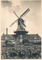 Nederland - 1946 - 5 Op 7,5 Cent Veth, Briefkaart G285v - Molenserie - Oliemolen Roderwolde - Ongebruikt - Postal Stationery