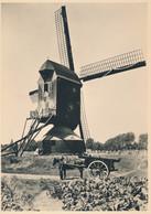Nederland - 1946 - 5 Op 7,5 Cent Veth, Briefkaart G285x - Molenserie - Standaardmolen Merun-Herten - Ongebruikt - Postal Stationery