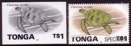 Tonga 1996 Proof + Specimen - $1.00 Turtle - Read Description - Tartarughe