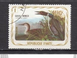 Haïti, Haitia, Oiseau, J.J. Audubon, Bird, Art, Peinture, Painting, Loon, Oie - Oche