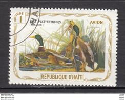 Haïti, Haitia, Oiseau, J.J. Audubon, Bird, Art, Peinture, Painting, Canard, Duck, Airmail - Anatre