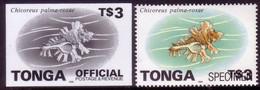 Tonga 1996 Proof + Specimen - $3.00 Shell OFFICIAL - Read Description - Conchiglie