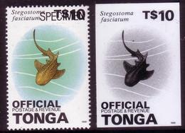 Tonga 1996 Proof + Specimen - $10.00 Shark OFFICIAL - Read Description - Vita Acquatica