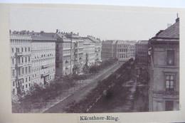 Photo CDV Vienne Wien Kärnter Ring Grand Hotel Palais Erzherzog Ludwig-Viktor Années 1860-1870 - Oud (voor 1900)