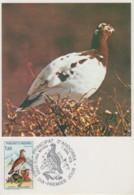 Carte  Maximum  1er  Jour  ANDORRE    Nature  :   Perdrix   Blanche    1979 - Maximumkarten (MC)