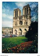 PARIS:  LA  CATHEDRALE  NOTRE - DAME  -  ANGLE  DE  PLIAGE  -  POUR  L' ITALIE  -  FG - Notre Dame Von Paris