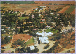 ISRAEL SHANA TOVA NEW YEAR KIBBUTZ MEFALSIM JUDAICA CARTE POSTALE POSTCARD CARTOLINA ANSICHTSKARTE - Año Nuevo