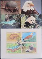 UNO NEW YORK 1995 Mi-Nr. 681/84 Maximumkarte MK/MC - Maximumkarten