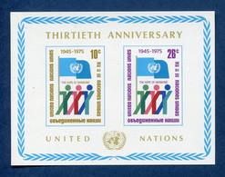 ⭐ Nations Unies - New York - YT Bloc N° 6 ** - Neuf Sans Charnière - 1975 ⭐ - Blocks & Kleinbögen