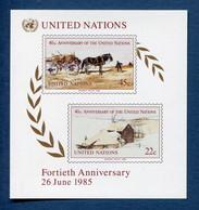 ⭐ Nations Unies - New York - YT Bloc N° 8 ** - Neuf Sans Charnière - 1985 ⭐ - Blocks & Kleinbögen