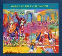 ⭐ Nations Unies - New York - YT Bloc N° 13 ** - Neuf Sans Charnière - 1996 ⭐ - Blocks & Kleinbögen