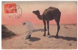 (Algérie) 035, Sahara, ND Phot 29, La Priere Du Chamelier Au Coucher Du Soleil - Sonstige