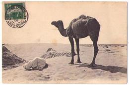 (Algérie) 033, Désert Du Sahara, ND Phot 459 A, La Priere Du Chamelier - Sonstige