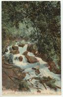 (Algérie) 010, Les Gorges De La Chiffa, LL 50, Le Ruisseau Des Singes - Sonstige