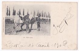 CPA N° 58 . Pied à Terre, Biskra Constantine Circulé En 1902, Soldats Et Chevaux. - Biskra