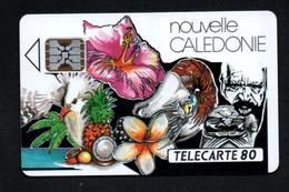 """Télécarte Nouvelle-Calédonie 80 UNITES """"Mosaïque"""" - Neukaledonien"""